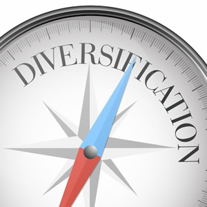 compass pointing to diversification
